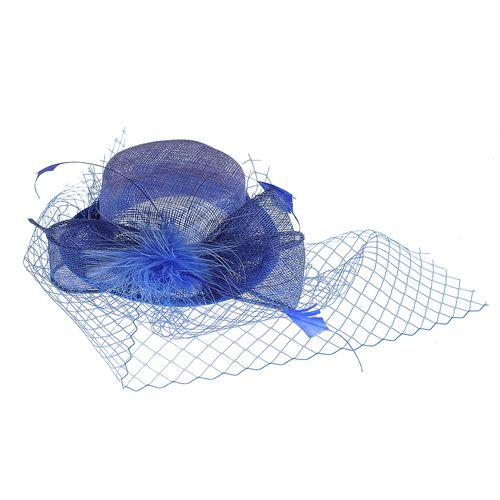 Agrafa palarie albastra cu plasa poza 2021